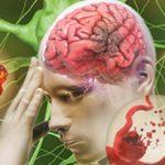 Nguyên nhân, cách điều trị tắc nghẽn mạch máu não?