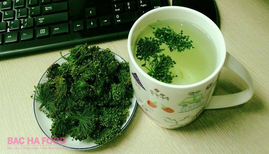 hoa tam thất pha trà