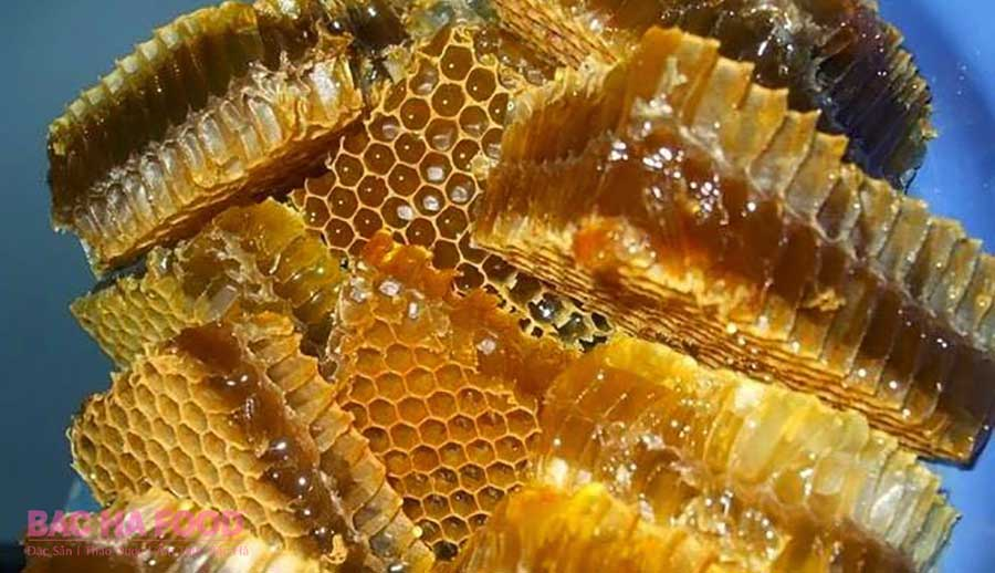 sáp ong rừng