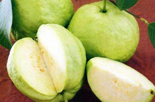 7 loại quả ăn nhiều vào buổi tối, da trắng bóc, bụng phẳng lỳ!